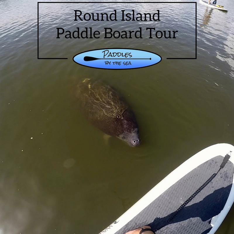 Paddle Board Tour Round Island