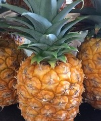 Baby Pineapples